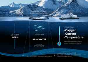 Monitoring salmon farming: oxygen, current and temperature with advanced equipment